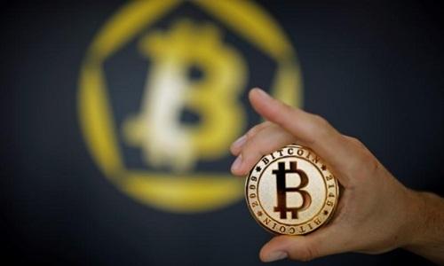Cơn sốt nhập 'trâu cày' Bitcoin